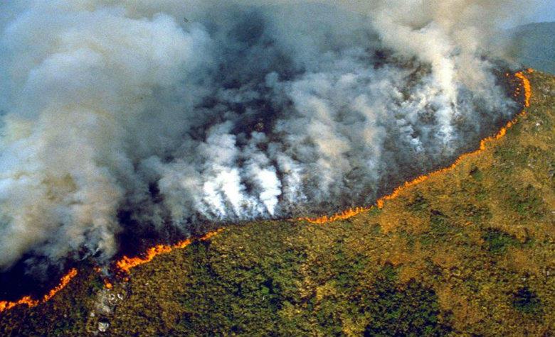(IMÁGENES) Así arde el Amazonas