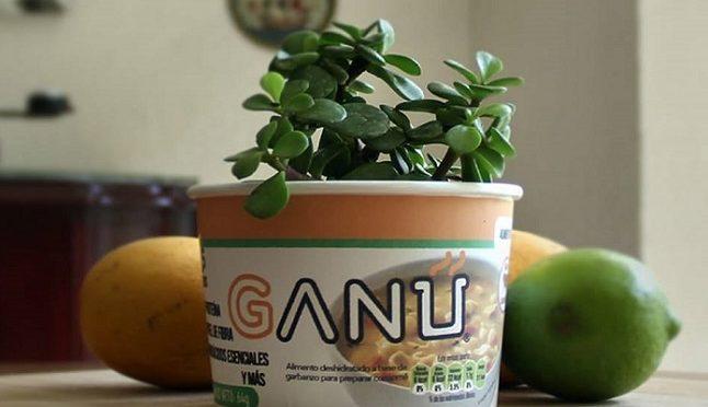 Estudiantes-mexicanos-crean-envase-biodegradable-para-sopa-instantanea-G